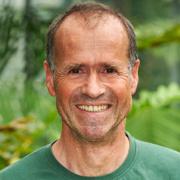 Prof. Dr. Harald Hillebrecht